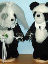 Wedding Pandas, Small